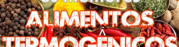 Alimentos Termogenicos