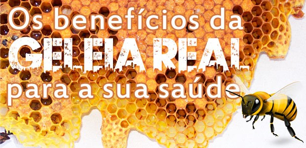 Geleia Real – o milagre das abelhas
